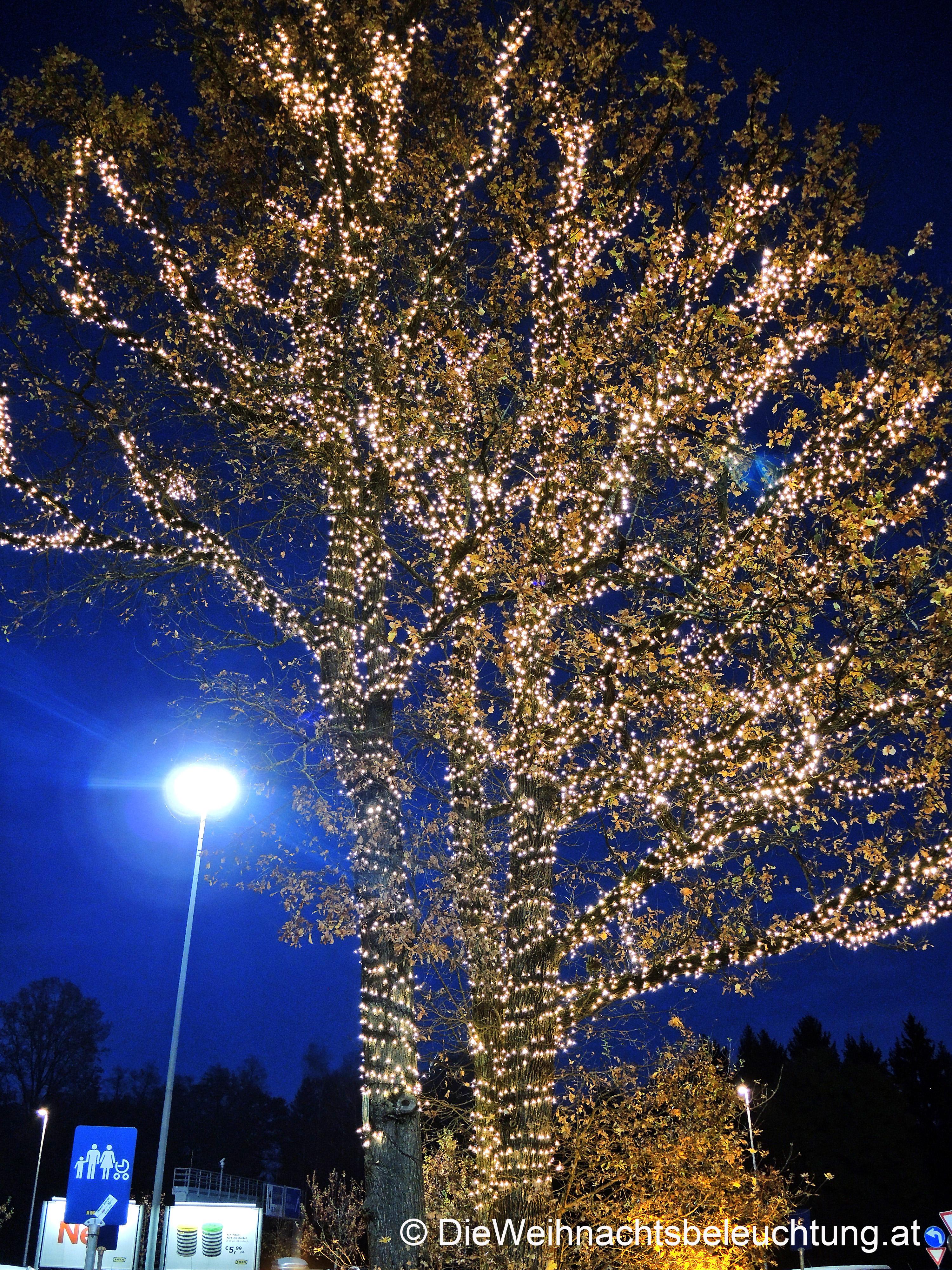 Led Weihnachtsbeleuchtung Baum.Weihnachtsbeleuchtung Für Firmen Und Geschäfte