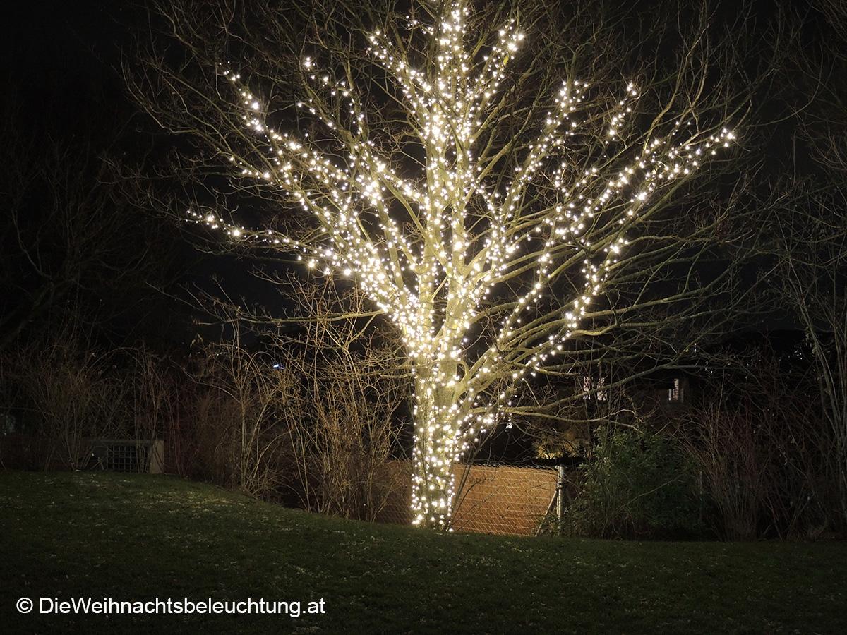 Led Weihnachtsbeleuchtung Baum.Weihnachtsbeleuchtung Für Haus Und Garten Dieweihnachtsbeleuchtung
