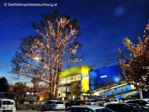 Weihnachtsbeleuchtung Außen Für Große Bäume.Professionelle Weihnachtsbeleuchtung Www Dieweihnachtsbeleuchtung At